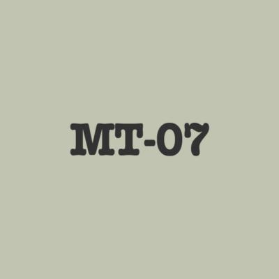 MT 07